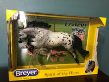 Load image into Gallery viewer, Glossy EZ To Spot-Collector Club Appreciation Gamblers Choice Exclusive-Breyer Traditional