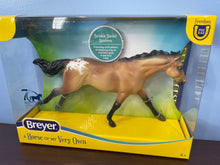 Load image into Gallery viewer, Buckskin Blanket Appaloosa-Breyer Classic-New for 2021
