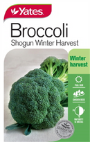 SEEDS BROCCOLI SHOGUN WINTER HARVEST