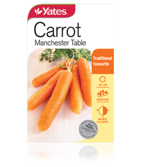 SEEDS CARROT MANCHESTER TABLE