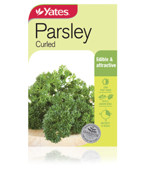 SEEDS PARSLEY CURLED