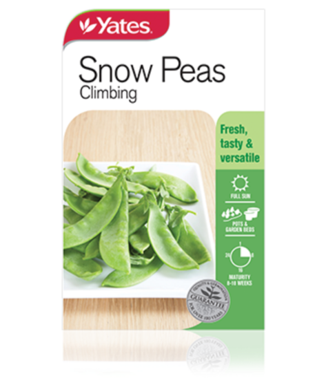 SEEDS SNOW PEA CLIMBING