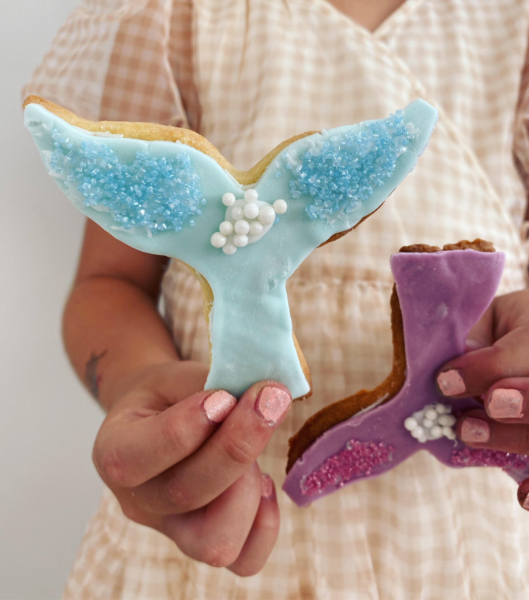 Under the Sea biscuit baking kit