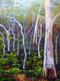 GUM TREES - NORTON SUMMIT, Oil Painting by maureen finck Artist