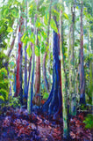 DORRIGO NATIONAL PARK - RAIN FOREST, Oil Painting by maureen finck Artist