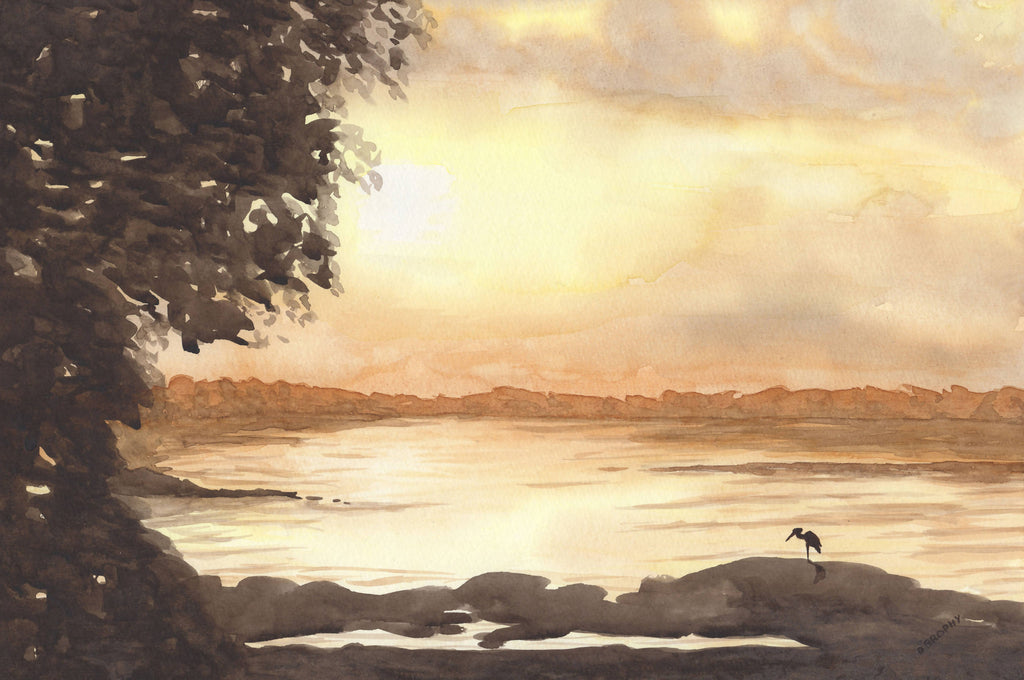 Evening Glow, Watercolour Painting by Debbie Brophy Artist