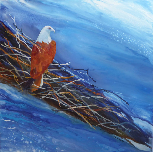 Guarding the Nest - Brahminy Kite, Acrylic Painting by Clare Riddington Jones Artist