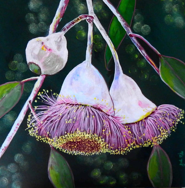 Pink Perfection - Gumnut Blossoms, Acrylic Painting by Julie Hollis Artist