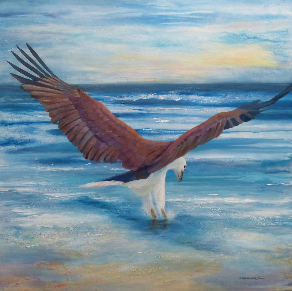 Fishing - White Bellied Sea Eagle, Acrylic Painting by Clare Riddington Jones Artist