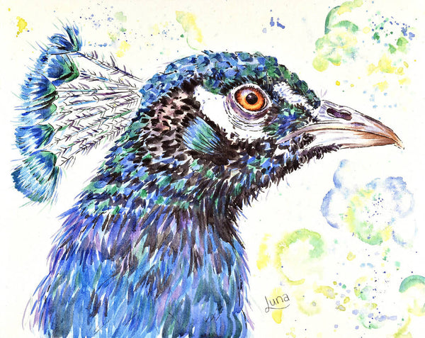 P Is For Peacock, Watercolour Painting by Luna Vermeulen Artist