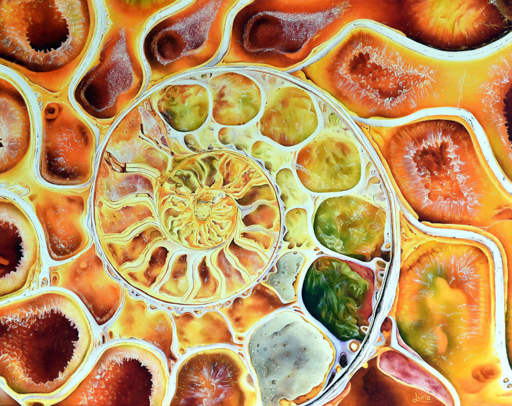 Fibonacci Fascination, Oil Painting by Luna Vermeulen Artist