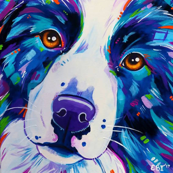 Collie Close Up - Dog Portrait, Acrylic Painting by Eve Izzett Artist