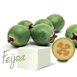 Feijoa 3pc Marshmallow - Great Day Mallow