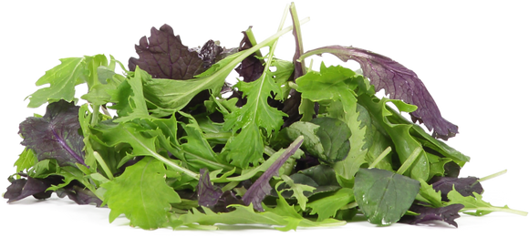 Lettuce - Mixed
