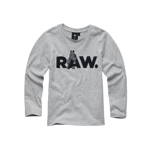 Grey 'Raw' Dino Top
