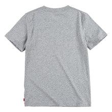 Load image into Gallery viewer, Grey Batwing T-Shirt