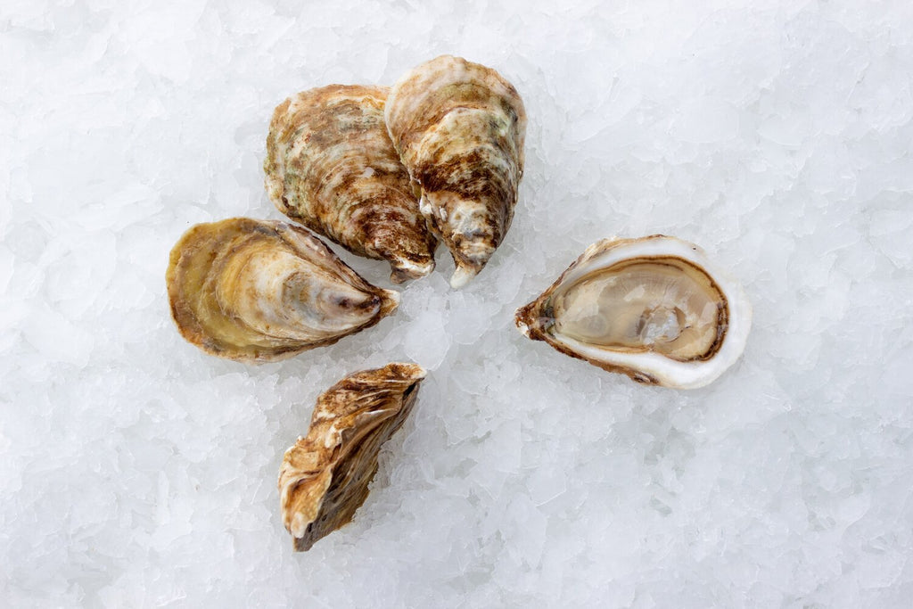 Premium Savage Blondes Oysters - Savage Harbour, PEI(CAN) - Docena