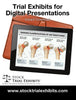 Digital Presentation Garden Classification of Hip Fractures Trial Exhibit
