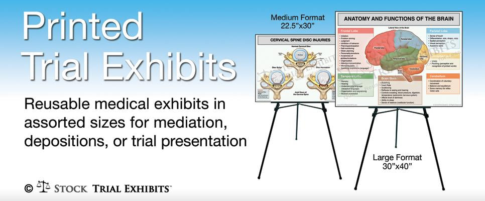 Printed Trial Exhibits