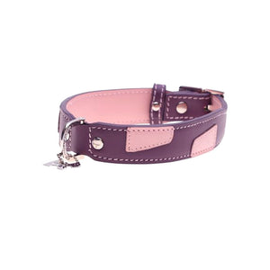 Hamish McBeth Leather Alfie Dog Collar