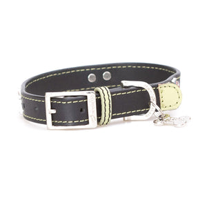 Basix British Bulldog Collar