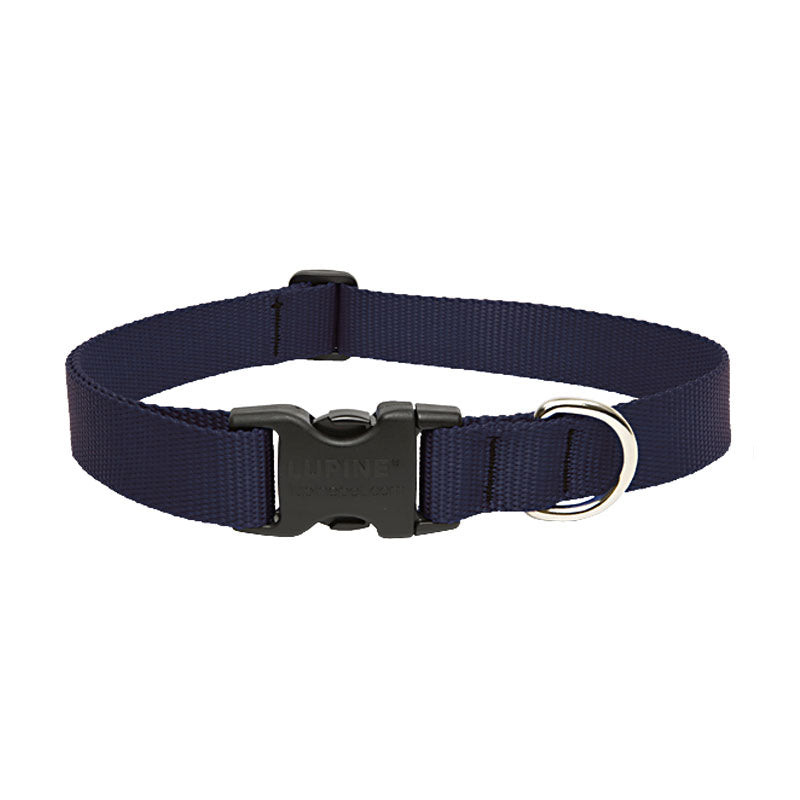 Lupine Solid Colours Dog Collar