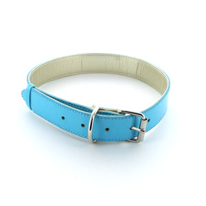 Pop Dog Collar