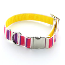 Load image into Gallery viewer, Brighton Rock Dog Collar