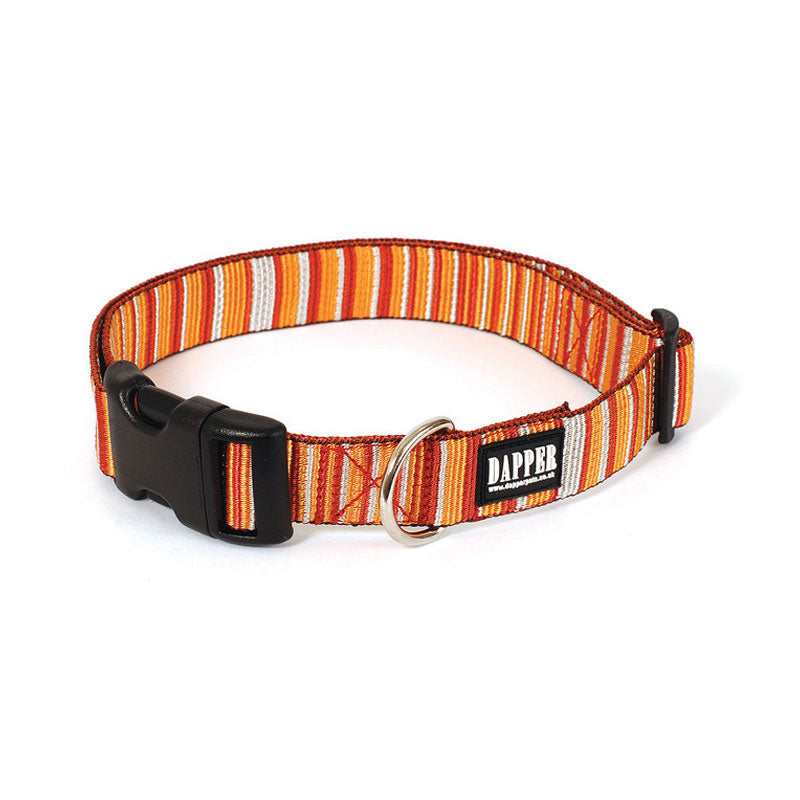 Dapper Dog Caramel Dog Collar