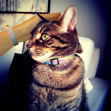 Load image into Gallery viewer, Chatty Catty Cat Collar