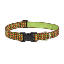Load image into Gallery viewer, Copper Canyon Dog Collar - Medium Large