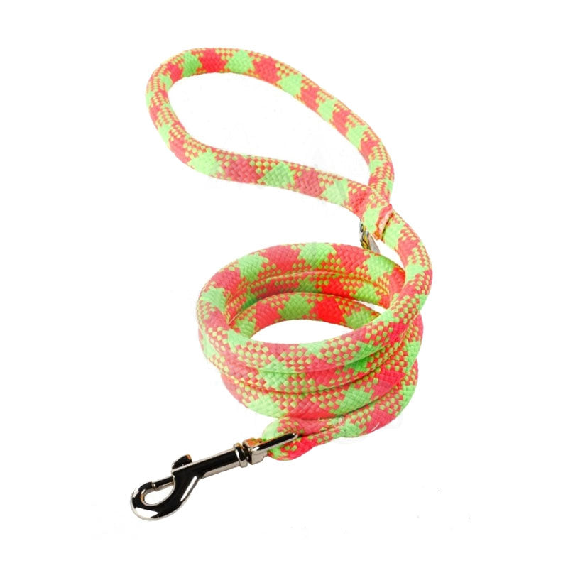 Yellow Dog Design Fluorescent Green & Pink Braided Lead