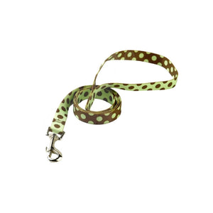 Yellow Dog Design Polka Dot Dog Lead
