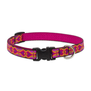 Heart 2 Heart Dog Collar
