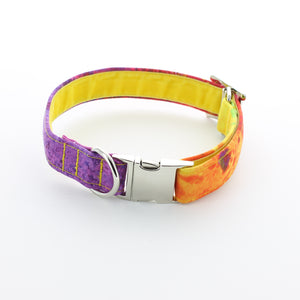Indian Summer Dog Collar
