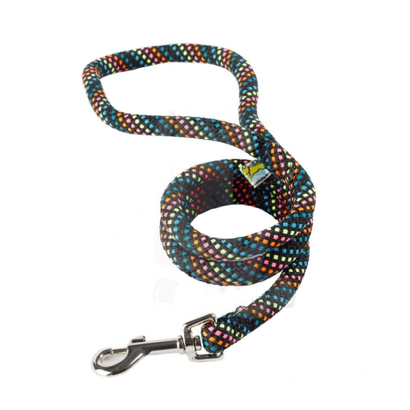 Yellow Dog Design Multi Colour & Black Braided Lead