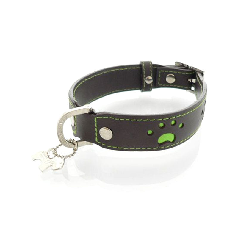 Hamish McBeth Leather Paws Dog Collar