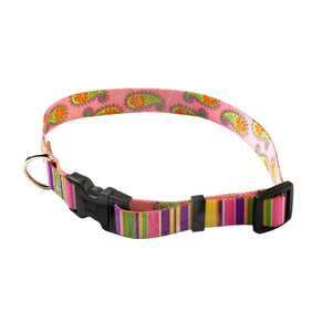 Yellow Dog Design Pink Stripes With Paisley Dog Collar