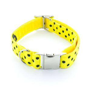 Polka Dot Dog Collar (Black)