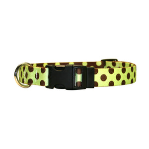 Yellow Dog Design Standard Polka Dot Collars