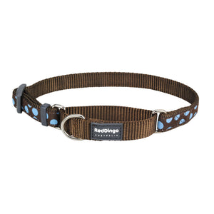 Red Dingo Blue Spots on Brown Half Check (Martingale) Collar