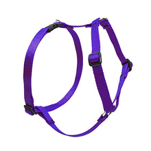 Load image into Gallery viewer, Lupine Solid Colours Roman Harness