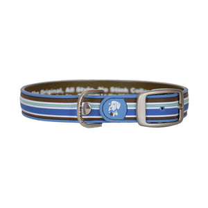 Dublin Dog All Style No Stink Waterproof Dog Collar Classic Stripe Tahitian Sky