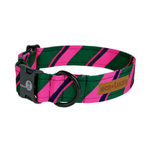 Load image into Gallery viewer, Dublin Dog Ivy League Socialite Eco Lucks Dog Collar