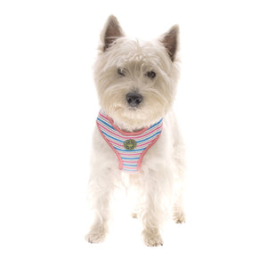 Striped Dog Harness