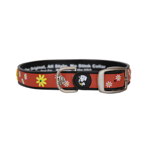 Dublin Dog All Style No Stink Waterproof Dog Collar Daisy Daze Black Eyed Susan