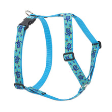 Load image into Gallery viewer, Turtle Reef Roman Harness