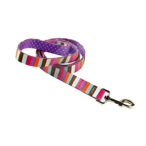 Yellow Dog Design Uptown Multi Stripe on Purple Polka Dog Lead