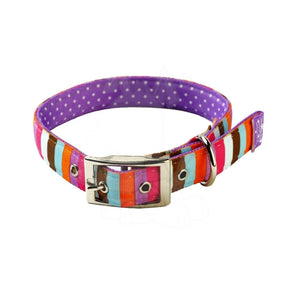 Yellow Dog Design Uptown Multi Stripe On Purple Polka Dog Collar