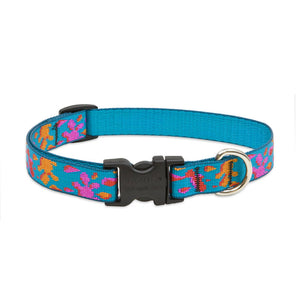 Wet Paint Dog Collar
